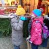 28.11.2015 - Weihnachtsmarkt Thurn und Taxis